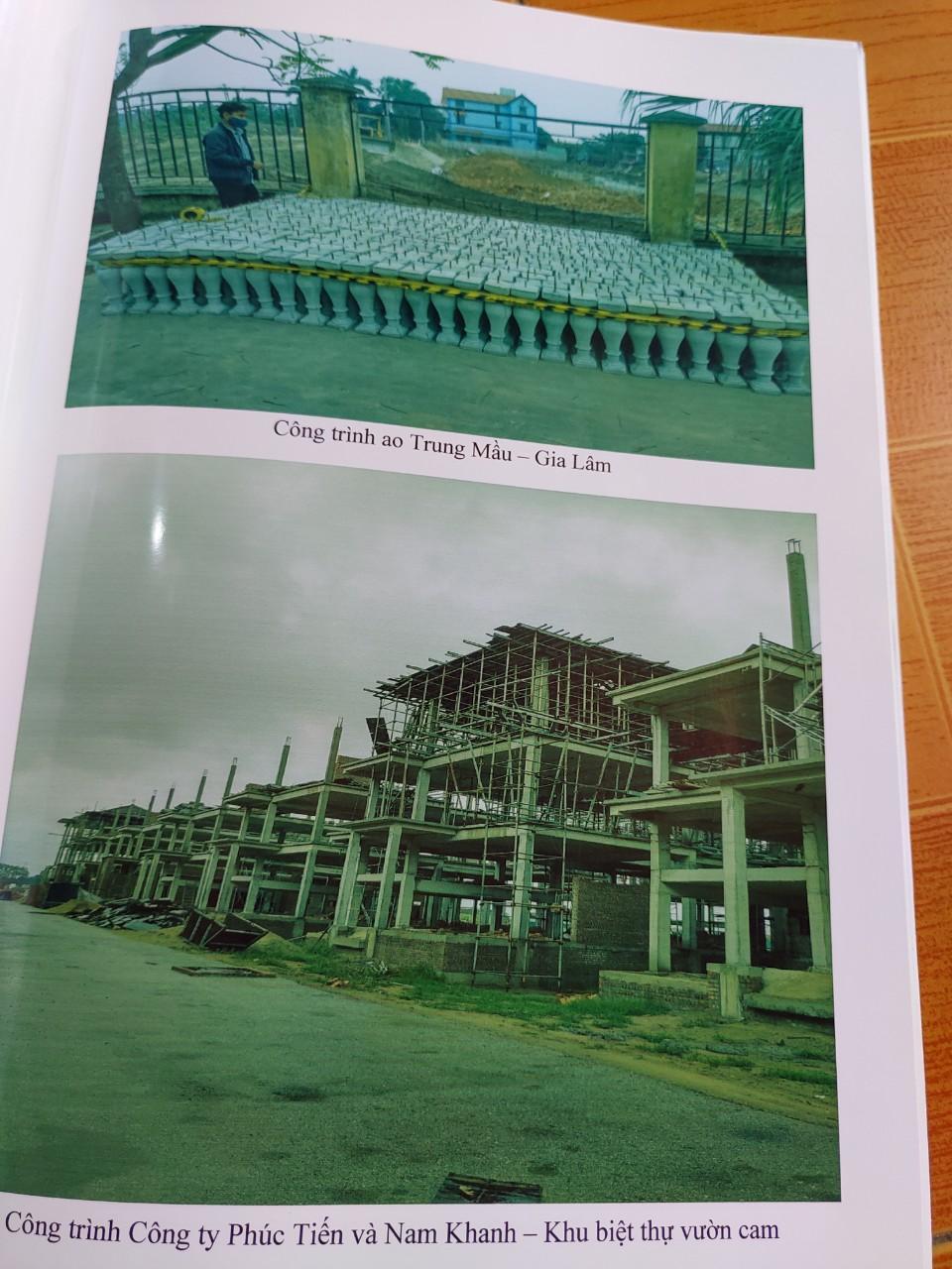 Hình ảnh hồ sơ giới thiệu về bê tông nghệ thuật tháng 9-2020